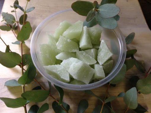 hakhoning eucalyptus met blad